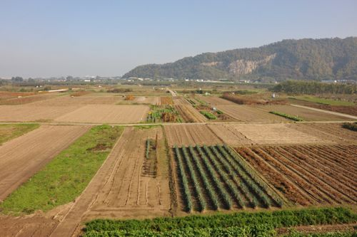 <日本の農地の風景>