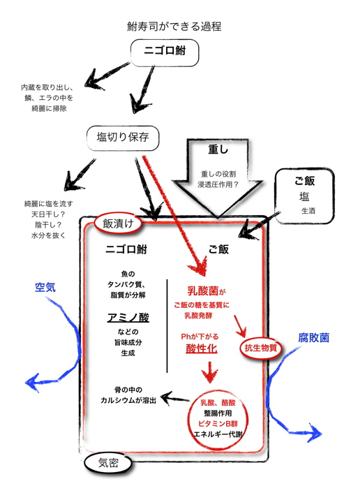 <鮒寿司ができる過程>
