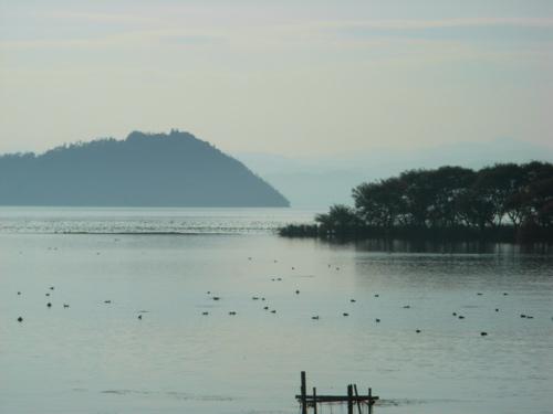 <冬の湖北の琵琶湖岸>