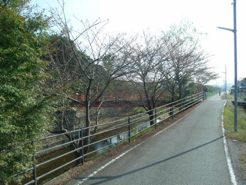 <車道脇から菌神社へ向かう小道>