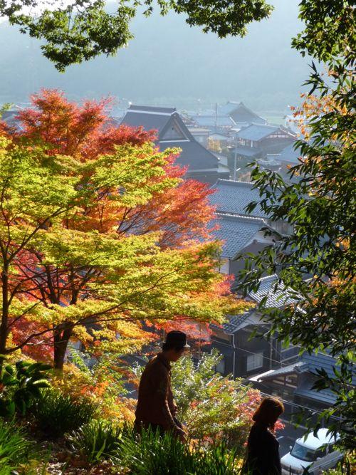 <與志漏神社から見下ろす古橋の集落>