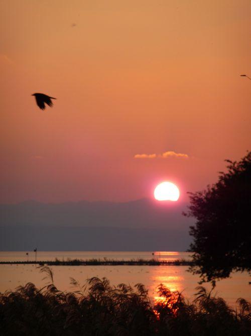 <琵琶湖の対岸に沈む夕日>
