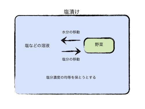 <塩漬けのイメージ図>