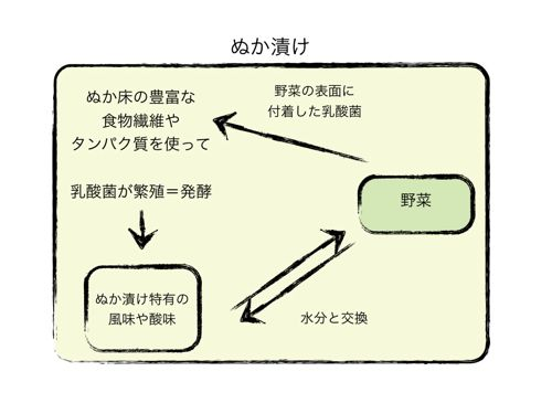 <ぬか漬けのイメージ図>