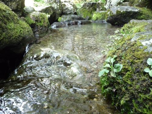 <小さな水源地ですが>