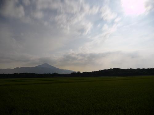 <伊吹山と田んぼ>