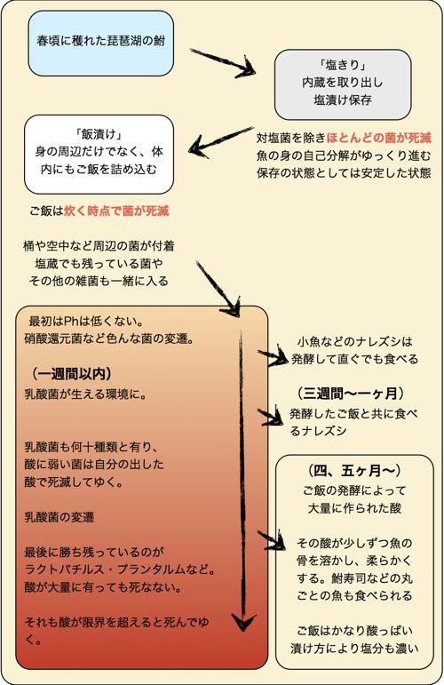 <ナレズシの菌の変遷>
