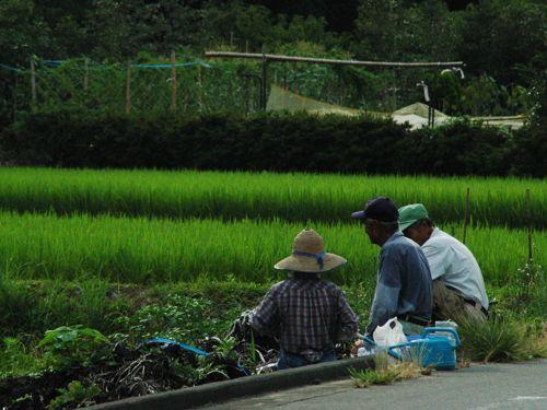 <image 農業>