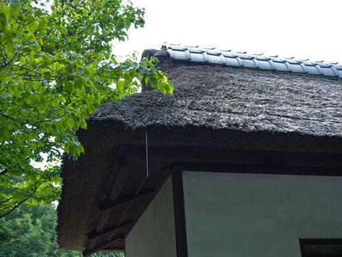 <茅葺き屋根>
