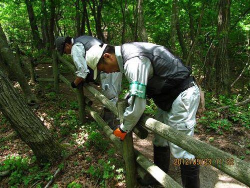 <仕事の様子 木柵の修繕>